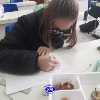 3ª série EM | Prática no Laboratório de Ciências