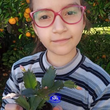 3º ano - aprendendo a cuidar da natureza